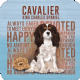Cavalier King Charles Spaniel cork backed drinks mat / coaster (og)